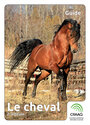 Book cover: Le cheval, 2e édition - MORIN RICHARD - 9782764903704