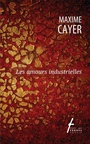 Book cover: Amours industrielles (Les) - Cayer Maxime - 9782896453962
